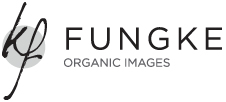 Premium Toronto Wedding Photography by Fungke Images logo